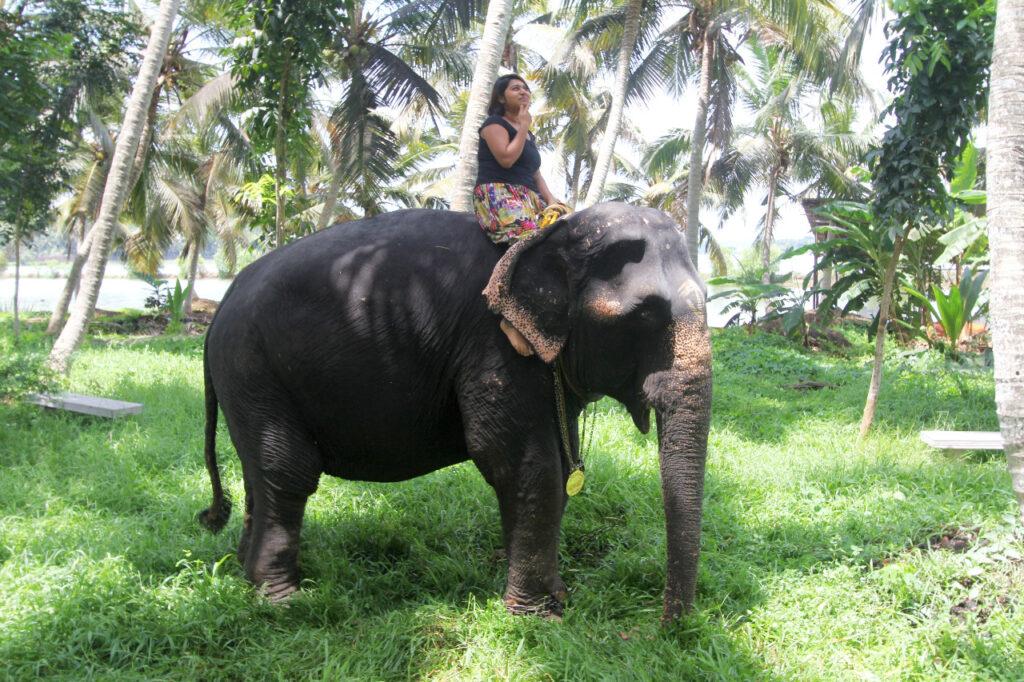 Aparna auf einem Elefanten auf dem kanthari Campus