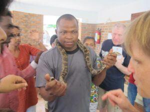 Schlangen auf dem kanthari Campus